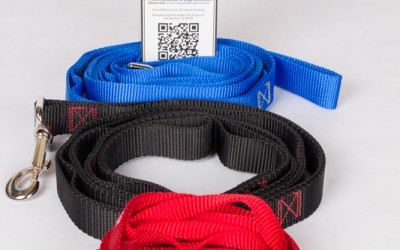 Sadie's 8-in-1 Security Leash