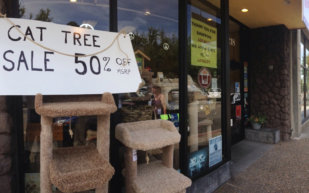 Cat furniture 50% off sale while supplies last